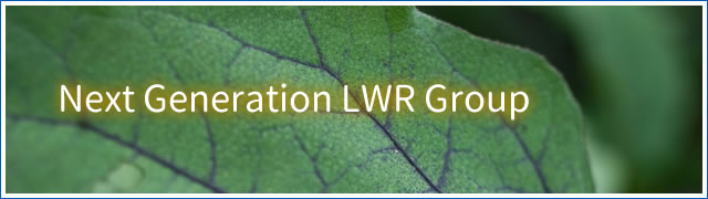 Next_Generation_LWR_Group