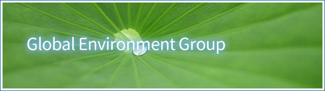 Global Environment Group