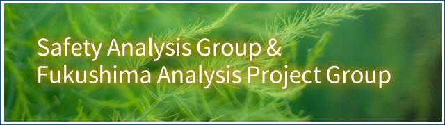 Safety Analysis Group & Fukushima Analysis Project Group