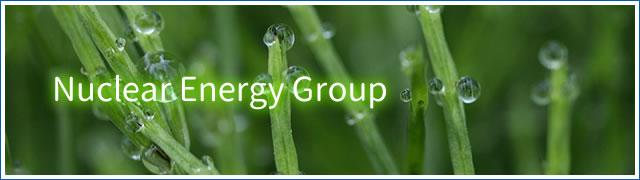 Nuclear Energy Group